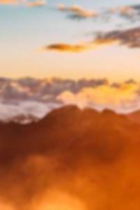 صور مثيره لأوليفيا هولت